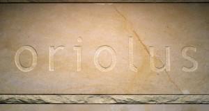 kamień wejściowy apartament oriolus kraków